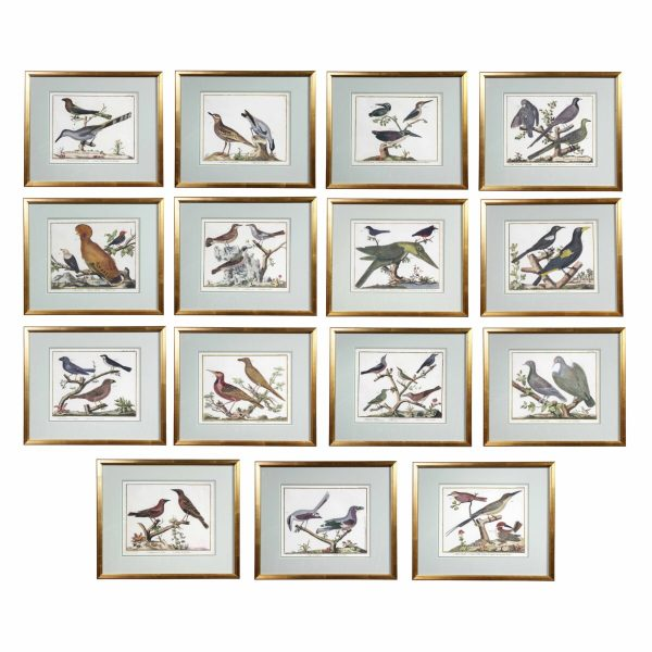 Set of Fifteen Framed Hand Colored Engravings of Birds by Francois Martinet